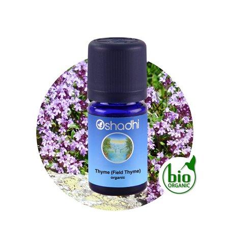 Thyme (Field Thyme) organic