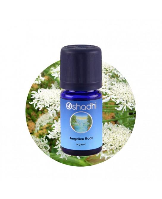 Angelica Root organic...