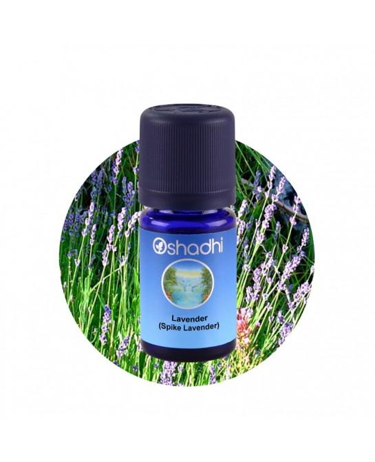 Spike lavender essential oil