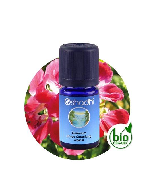 Rose Geranium organic