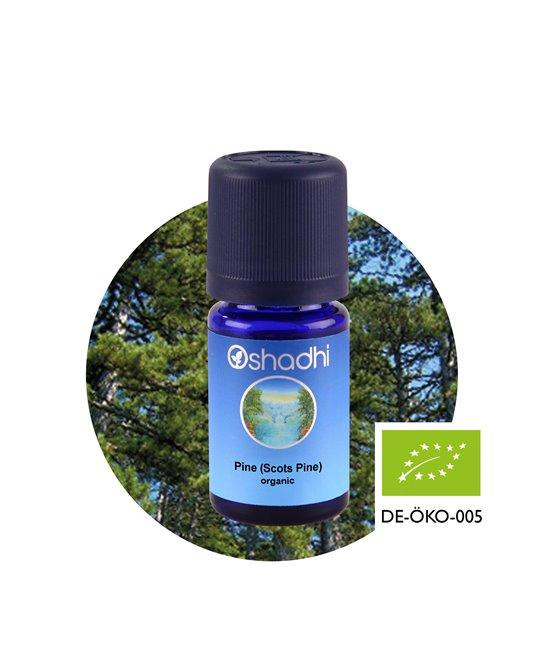 Scots Pine organic