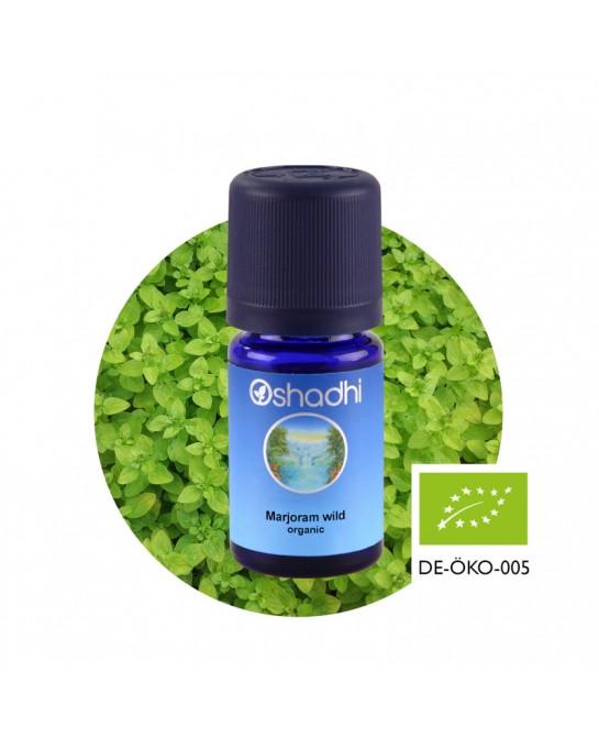 Marjoram wild essential oil
