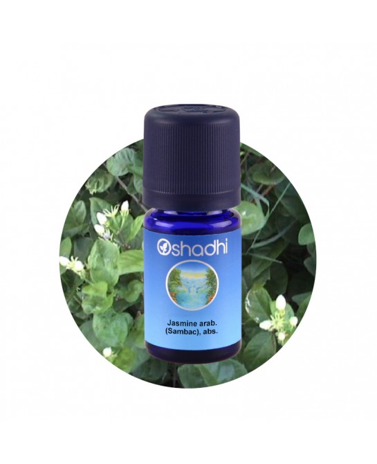 Jasmine sambac essential oil
