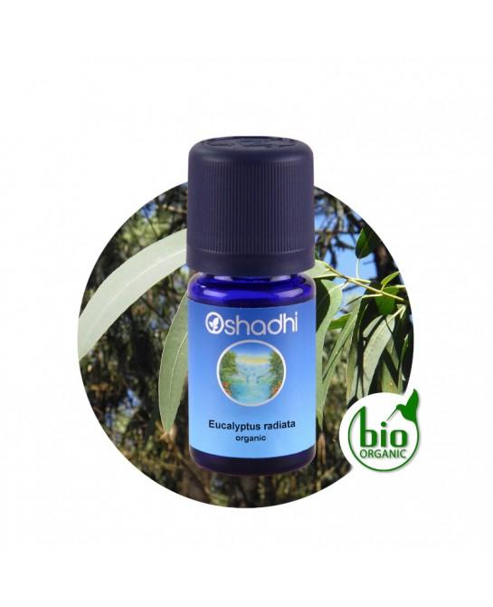 Eucalyptus radiata organic...